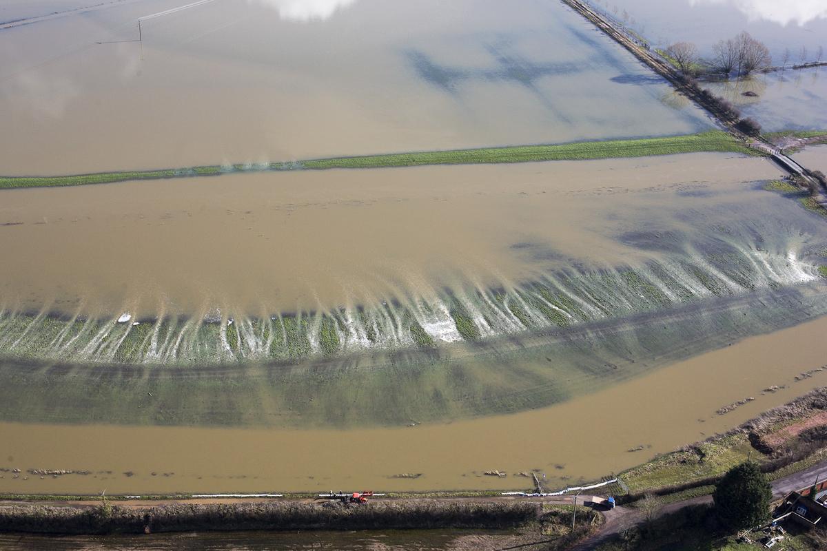 somerset floods 2014 bill bradshaw photography