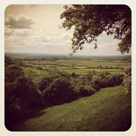 tourism photo of somerset levels