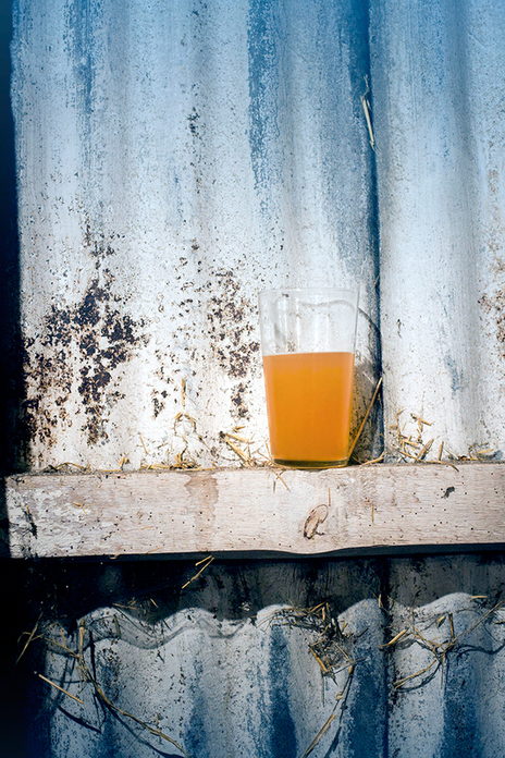 a pint of cider sits on a barn beam against tin