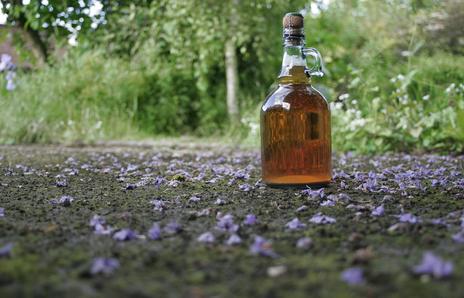beautiful blossom on ground around flagon of cider