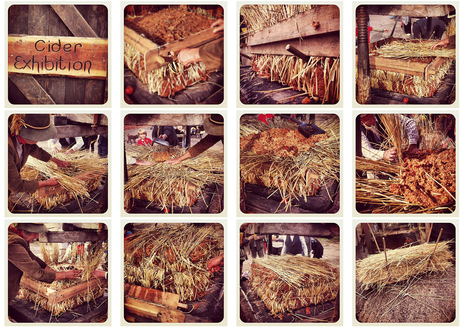 traditional cidermaking using straw
