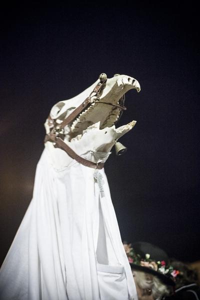 horses skull in tradition Pagan ceremony