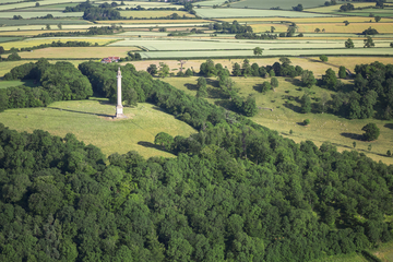 aerial photo of Burton Pynsent Monument, Somerest