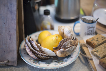 lemon and oyster shells in a cafe
